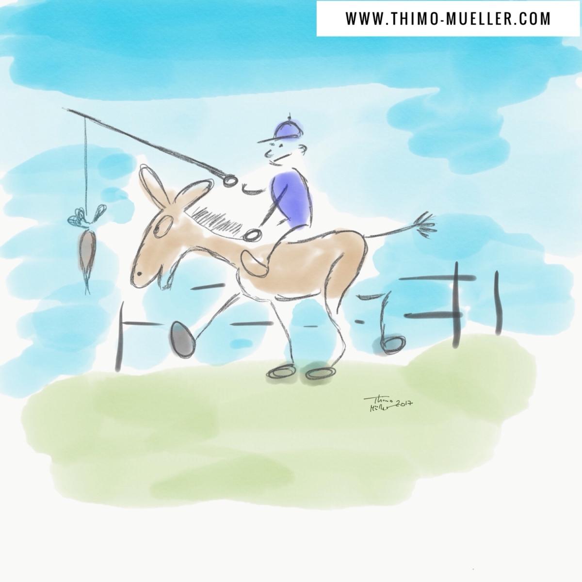 Katastrophen und ein Ponyhof